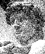 Image converted to monochrome using Random Dithering